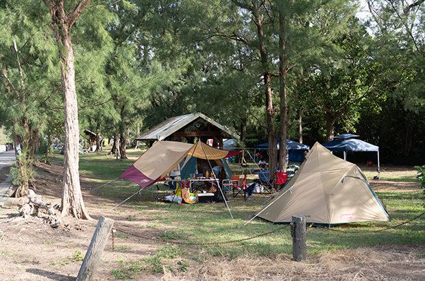 ファミリーキャンプにおすすめのキャンプ場!ネイチャーみらい館